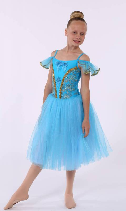 PRINCESS AURORA  - Blue and Silver