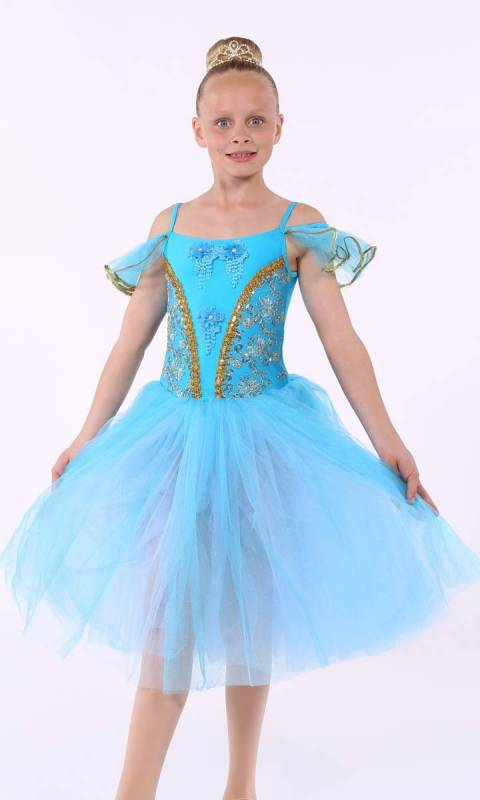 PRINCESS AURORA  - Blue and Gold 7796