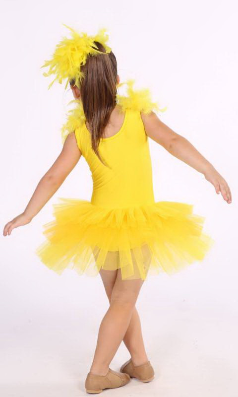 Yellow and Golden yellow with silver sequins and yellow feathers