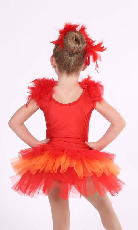 Red and Orange with silver sequings and red feathers