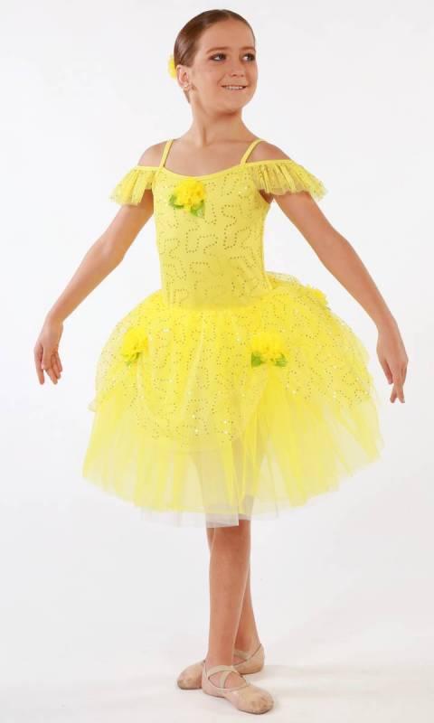Beauty Belle  Dance Costume