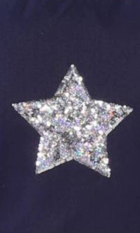 LARGE SILVER SEQUIN STAR  Dance Costume